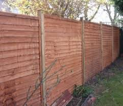 Garden Fence Types Space Improvers 94 Feedback Painter U0026 Decorator In Paisley