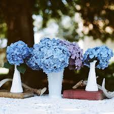 25 best blue hydrangea centerpieces ideas on pinterest blue