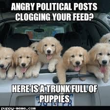 Meme Politics - 1458273351505 png