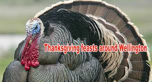 this thanksgiving can eat thanksgiving dinner at vfw and or