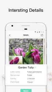 picturethis plant identification android apps on google play