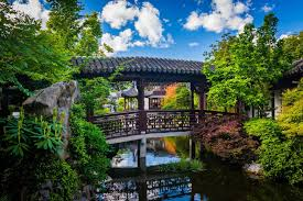 bridge over a pond at the lan su chinese garden in portland