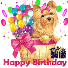 happy birthday comments graphics and greetings codes for orkut