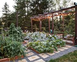 vegetable garden design ideas vegetable garden layout planner