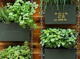 Herb Garden Design Ideas How To Grow A Herb Garden Design Ideas For Outdoors And Indoors