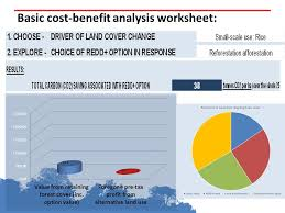 incorporating cost benefit analysis of redd options into planning