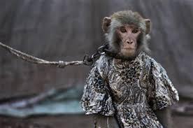 Monkey Bench History Of Monkey Puppets