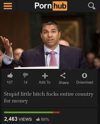 Little Bitch Memes - stupid little bitch fucks entire country for money ajit pai know
