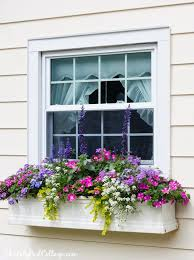 Wooden Window Flower Boxes - best 25 flower boxes ideas on pinterest outdoor flower boxes