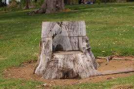 Stump Chair Tree Stump In California Is Turned Into U0027the Giving Tree U0027