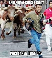 Meme Photographer - 92 best photography memes images on pinterest funny pics funny