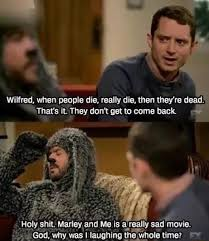 Wilfred Meme - wilfred ifunny