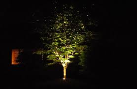 Outdoor Up Lighting For Trees Low Voltage Landscape Lighting Innovative Horticultural