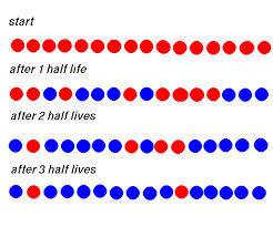 calculating half life u2014 mr mulroy u0027s earth science