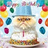 big hug ginger kitten birthday card amazon co uk kitchen u0026 home