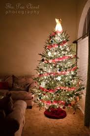 christmas tree photo sherry conrad photography on fb snowy