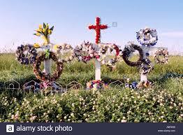 roadside memorial crosses roadside memorial shrine of flowers and crosses for victims killed