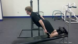Decline Bench Leg Raises Diesel Crew U2013 Muscle Building Athletic Development Strength