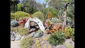 beautiful succulent rock garden ideas hd youtube