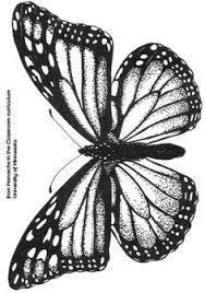butterfliez by alves via behance ilustras