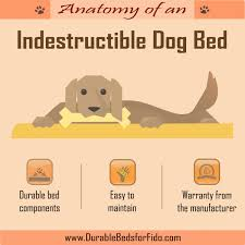Tough Dog Bed Indestructible Dog Bed Visual Ly