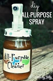cleaning windows with vinegar homemade all purpose cleaning spray with infused vinegar crunchy