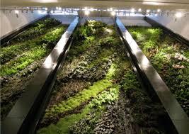greenroofs com hydroponic living walls u2013 diy u2013 really by george