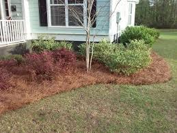pinestraw mulch yard care extraordinaire 843 478 9452