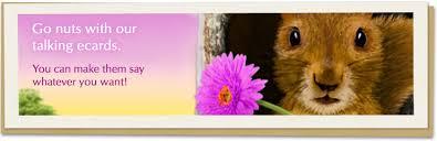 talking ecards get free talking ecards at american greetings