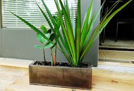 tall galvanized planters best galvanized planters ideas