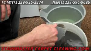 stainmasters carpet upholstery cleaning stainmaster carpet cleaning
