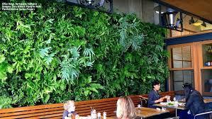 living room living wall herb garden diy living wall herb garden