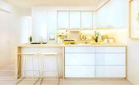 bathroom gorgeous modern kitchen design white cabinets ideas