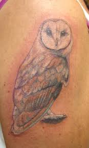 barn owl tattoo on biceps tattoos book