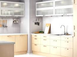 Birch Kitchen Cabinets by Bamboo Kitchen Cabinets Pros And Cons Kitchen And Remodeling
