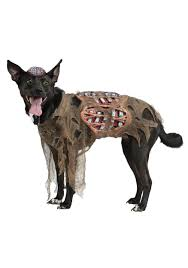 Halloween Skeleton Dog by Zombie Dog Costume