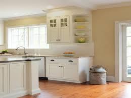 Kitchen Corner Shelf by Kitchen Cabinet Shelves Designing Pictures A1houston Com
