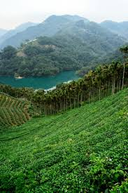 Thousand Islands by 7 Best Thousand Island Lake Taiwan Images On Pinterest Lakes