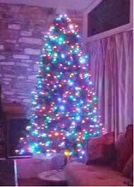 multi colored lights or white lights