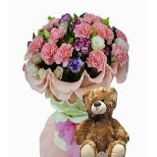 Teddy Bear Delivery Teddy Bear Teddy Bear Delivery Isabela
