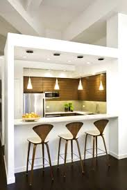 apartments pleasant modern kitchen design for condo images