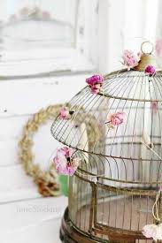 Decorative Bird Cages For Centerpieces by 67 Best Beautiful Birdcages Images On Pinterest Birdcage Decor