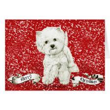 westie dog christmas cards photocards invitations u0026 more