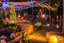 Zoo Lights Discount Tickets Reserve The Entire Zoo Houston Zoo