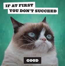 Grumpy Cat Mini Wall Calendar - grumpy cat calendar 2018 calendar club uk