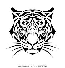 isolated muzzle tiger black white vector stock vector 560028769