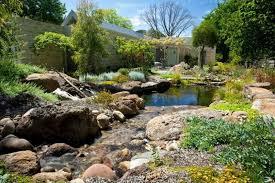 Backyard Swimming Ponds - natural swimming ponds