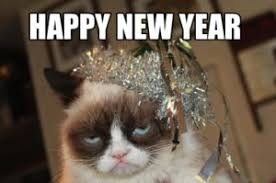 New Cat Meme - meme happy new year 2018 funniest memes of all time