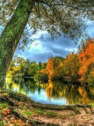 imagenes lindas naturaleza pin de arioch kaos en naturaleza pinterest fotos lindas