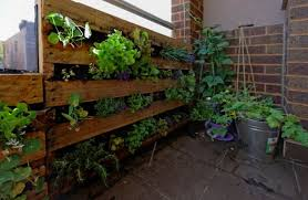 pallet vegetable garden pallet ideas recycled upcycled